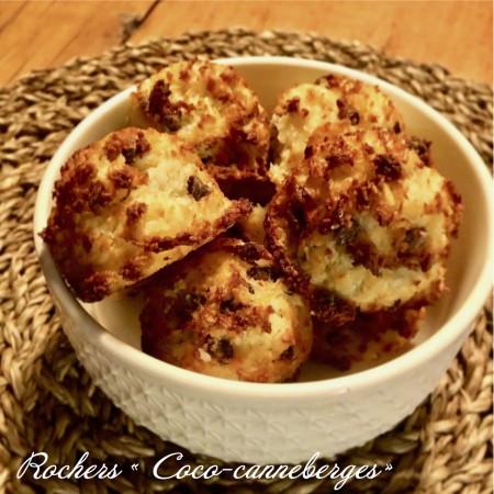 Rochers Coco-Canneberges Saveurs Santé